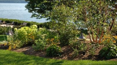 nh-lakes-region-perennials