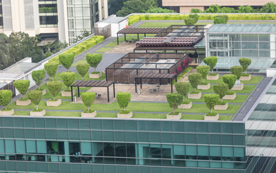 Green-Roofs-in-NH